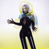 Vulnicura cover art