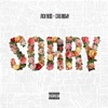 Sorry (feat. Chris Brown)