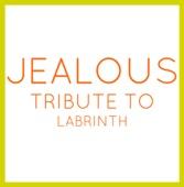 Jealous (In the Style of Labrinth) [Karaoke Version]