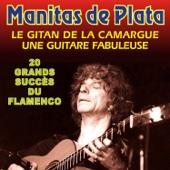 20 Grands Succes Du Flamenco