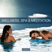 Wellness, Spa & Meditation, Vol. 2