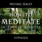 [Download] How to Meditate in 12 Minutes MP3