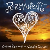 Permanent (feat. Colbie Caillat) - Single