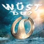 Wahnsinns3 - Wüst Du (Minimal-Mix) Grafik