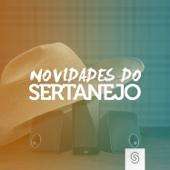 Various Artists - Novidades do Sertanejo (Ao Vivo)  arte
