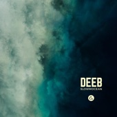 Deeb - The Story (feat. Asteroid) artwork