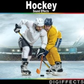 Europe Ice Hockey Game with Ovations and Applause