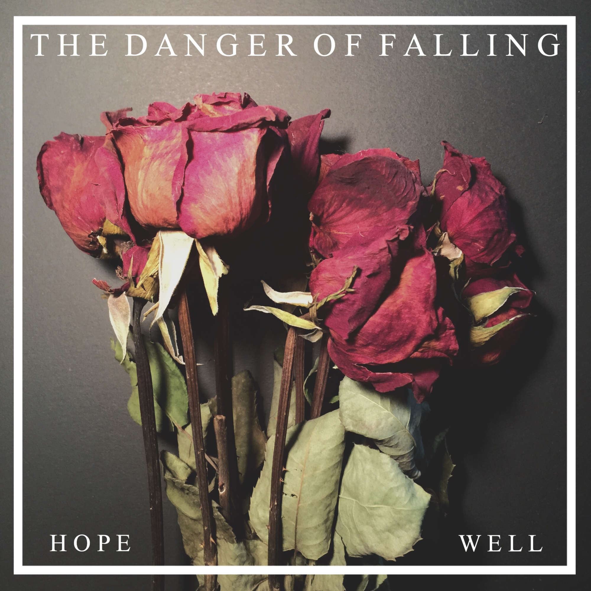 The Danger of Falling - Hope/Well [EP] (2016)