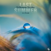RJ Chevalier - Last Summer (Feat. Tara Minton) [Moonnight Remix] обложка