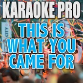 This Is What You Came For (Originally Performed by Calvin Harris & Rihanna) [Instrumental Version]