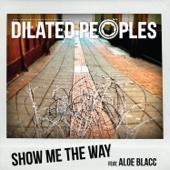 Show Me the Way (feat. Aloe Blacc) - Single cover art