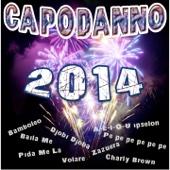 Capodanno 2014 (Tanti brani da ballare e da cantare per divertirsi la notte di capodanno)