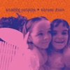 Siamese Dream (Remastered) ジャケット写真