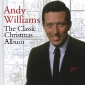 It's the Most Wonderful Time of the Year - Andy Williams & Robert Mersey Cover Art