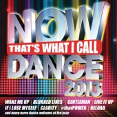 Now That's What I Call Dance 2013