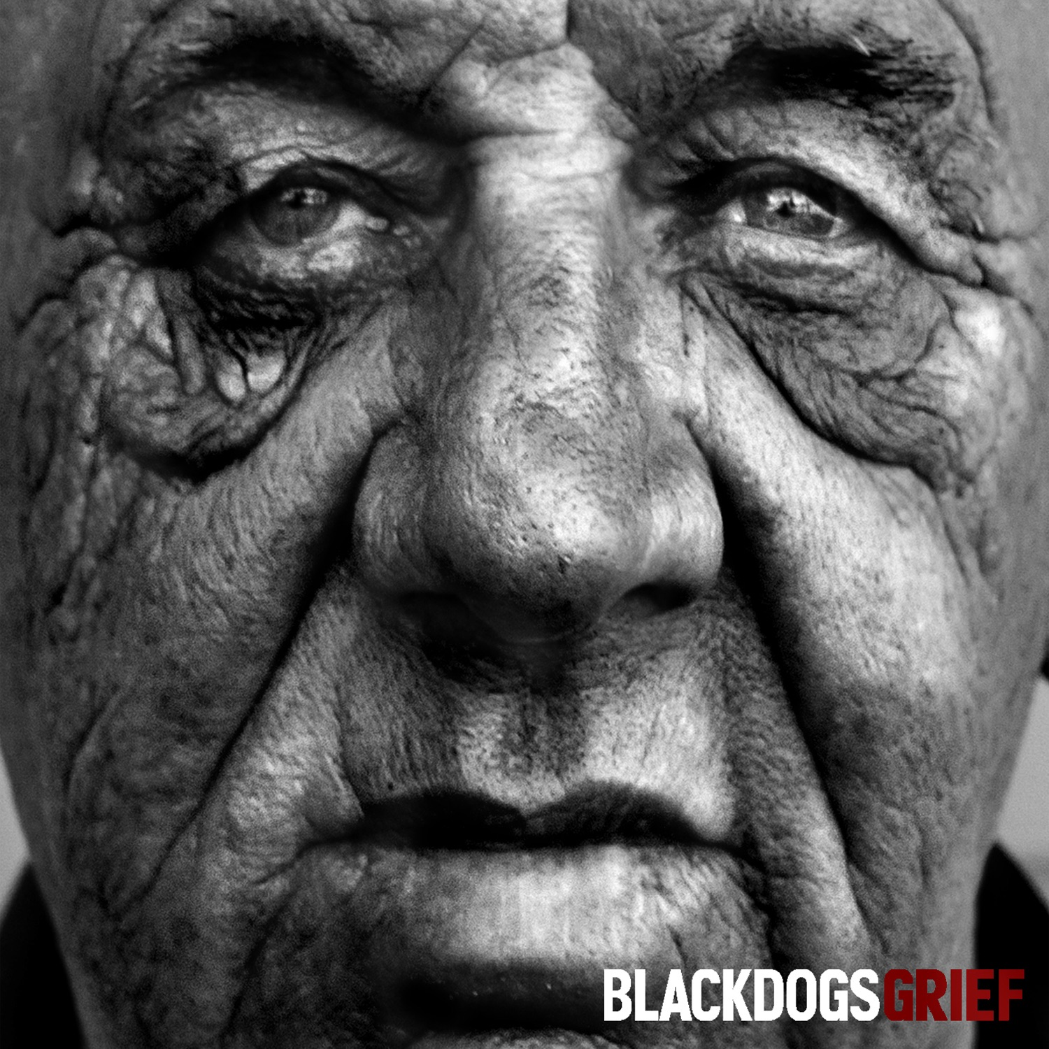 Black Dogs - Grief (2013)