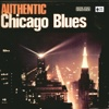 Authentic Chicago Blues