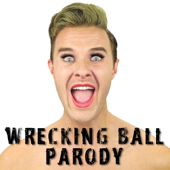 Wrecking Ball Parody