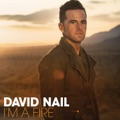 David Nail Night`s On Fire