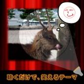 ドリフの盆回り(舞台替えのテーマ Short Ver.)/NIYARI計画ジャケット画像