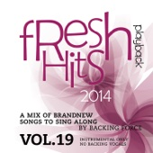 Fresh Playback Hits - 2014 - Vol. 19 (Instrumental Only - No Backing Vocals)