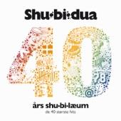 40 Års Shu-Bi-Læum (De 40 Største Hits)
