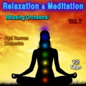 Relaxation & Meditation Vol. 7: Relaxing Orchestral