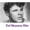 Del Shannon Hits, Del Shannon