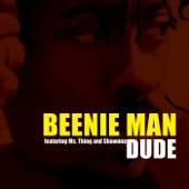 Dude (feat. Ms Thing & Shawnna)