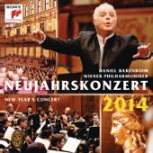 Neujahrskonzert 2014 (New Year's Concert 2014)