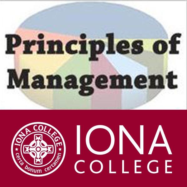 principals of management