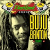 Penthouse Flashback Series (Buju Banton Vol. 1) ジャケット写真