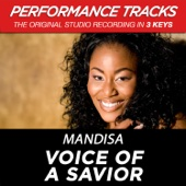 Voice of a Savior (Performance Tracks) - EP cover art