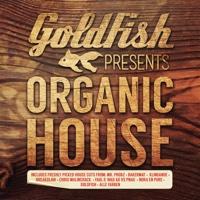 Goldfish - Moonwalk Away (Goldfish Moon Landing Mix) [Radio Edit]