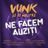 Ne facem auziti (feat. Alina Eremia, Nicole Cherry, Roman, Aylin, Gabriel Cotabita, Loredana, Mihai Georgescu & Sisu) - Single, Vunk