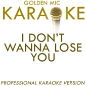I Don't Wanna Lose You (In the Style of Tina Turner) [Karaoke Version]