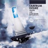 Tantrum Desire - Dark Water (Dub Foundation Remix)  artwork