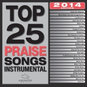 Top 25 Praise Songs Instrumental 2014