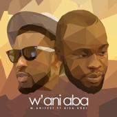 W'ani Aba (feat. Bisa Kdei)