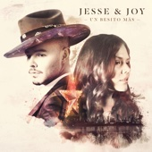 Jesse & Joy - Me Soltaste artwork