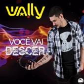 Você Vai Descer (feat. Márcio G & Biguli)