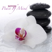 Yoga Beats [Free mp3 Download songs and listen music]