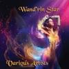 Wandrin Star *