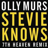 Stevie Knows (7th Heaven Remix) - Single