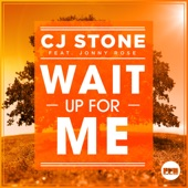 Wait up for Me (feat. Jonny Rose) [Remixes]