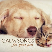 Calm Songs for Your Pets - Calming Music for Pet Cat or Dog, Gentle Sounds to Relax and Calm Down