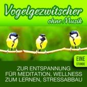 Vogelgezwitscher zur Entspannung, für Meditation und Wellness