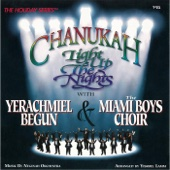 Chanukah: Light Up the Nights