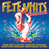 Fetenhits Karneval - Various Artists