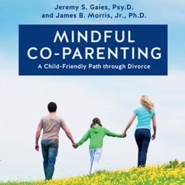 Mindful Co-Parenting: A Child-Friendly Path through Divorce (Unabridged) - Jeremy S. Gaies Psy.D., James B. Morris Jr. Ph.D. mp3 listen download